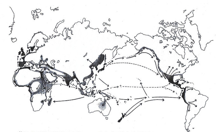 Grafton_Elliot_Smith_Cultural_Diffusion_Map_from_Egypt