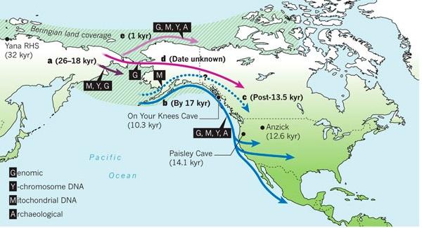 amerind-genome-migration